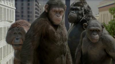 反叛正夯!《猩球崛起3》最新預告 人獸交戰誰能勝出?