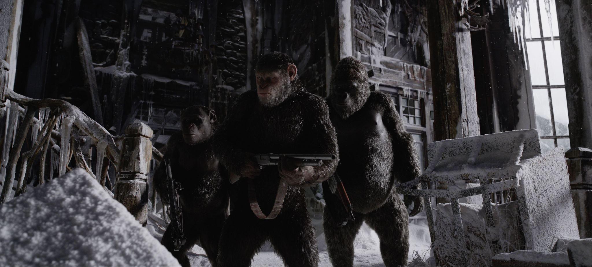 《猩球崛起:終極決戰》。(圖/福斯提供)