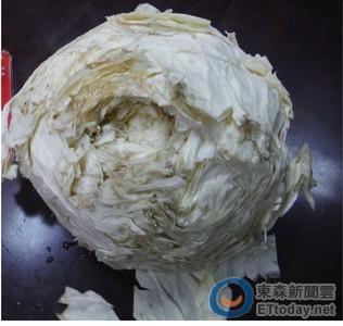 韓濟小火鍋坦言使用「垃圾菜」 衛生局現場封存4蔬菜