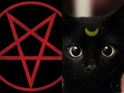 聽說畫個「魔法五芒星」黑貓就跳進來,不信你在家試試