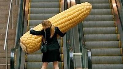古代沒衛生紙的9大「擦屁神器」 拿玉米自肛還是小case