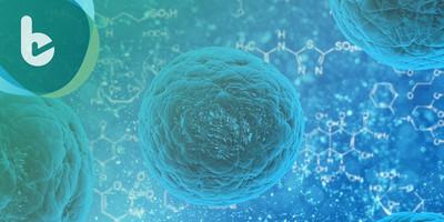 科學家研發人工胸腺,輔助抵抗癌細胞