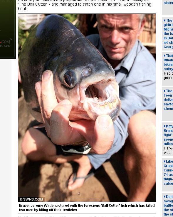 國外出現一種專吃男人蛋蛋的變種食人魚。(圖/取自每日郵報)