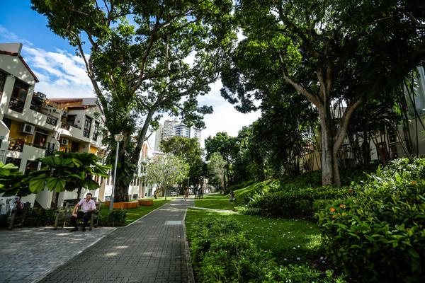 新加坡旅遊-恭錫街(圖/記者林世文攝)