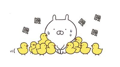 情侶般無厘頭賣萌,連北川景子都淪陷的兔丸與小伙伴