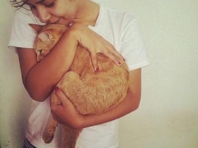 「全職抱貓員」工作內容:整天對貓咪摸又抱!簡直逼人投履歷啊