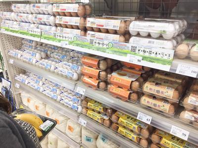 芬普尼毒雞蛋「歐洲燒到南韓」 食藥署要抽驗10件市售蛋