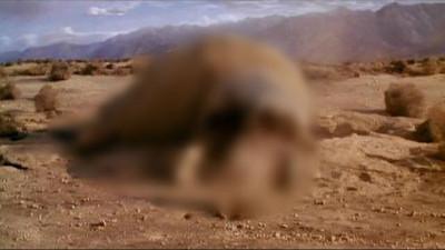 好萊塢科幻片5大老哏情節 看見沙漠你一定會想到甚麼?