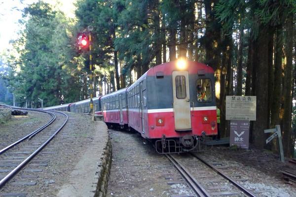 ▲阿里山森鐵郵輪式列車。(圖/台鐵提供)