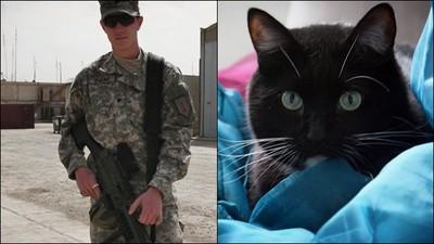 美軍遭戰爭噩夢糾纏 尋死前遇到「天使浪貓」人生被救贖