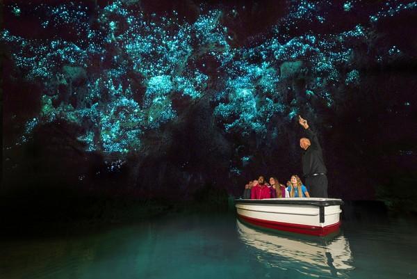 小預算聰明玩紐西蘭,深入北島訪哈比村,小資首選避暑趣(圖/shutterstock.com、巨匠旅遊、紐西蘭觀光局提供)