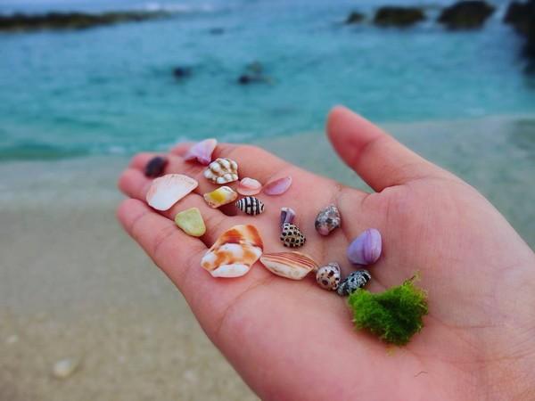 ▲小琉球厚石群礁。(圖/網友提供,請勿隨意翻拍,以免侵權。)