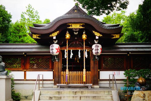 「京。花語」晴明神社X桔梗花。(圖/卡瓦納提供)