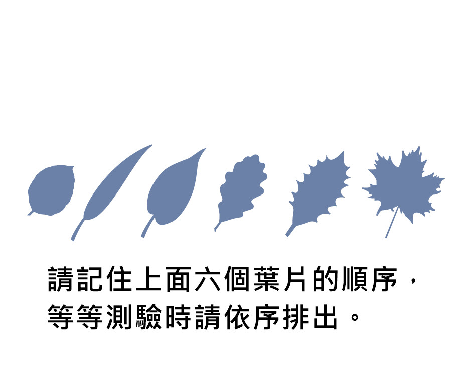 《從此不再忘東忘西》(圖/業者圓神出版提供)