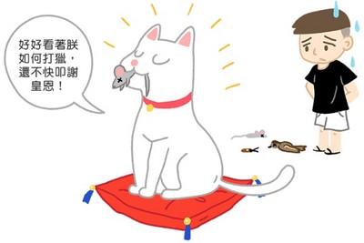 收到「貓的報恩」好甘心?想太多啦...因為覺得你太沒用