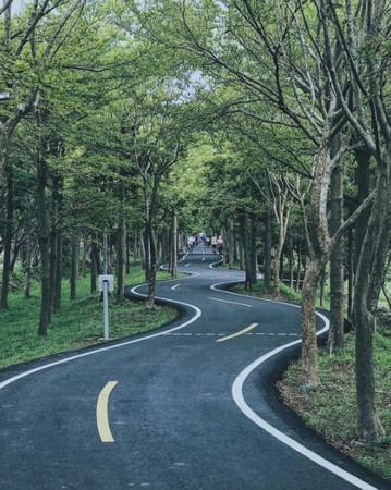 ▲台中潭雅神綠園道。(圖/IG@zyc___taiwan提供,請勿隨意翻拍,以免侵權。)