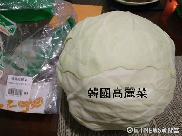 ▲好市多雷物韓國高麗菜。(圖/網友授權提供,請勿隨意取用,以免侵權。)
