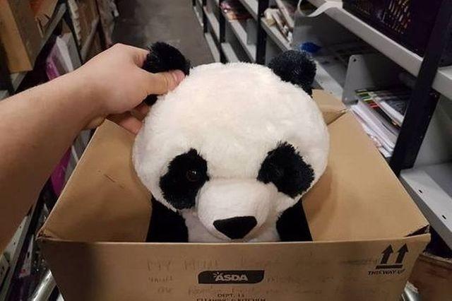 媽咪說要等她發薪!男童熊貓玩具上留言...跪求大家別買