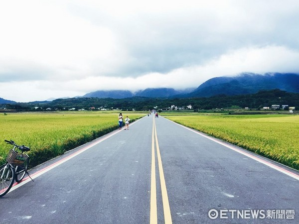 ▲池上伯朗大道(圖/記者于佳云攝)