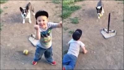 男孩狂衝本壘讓狗狗追不上 被爸爸判出局他大喊NO!