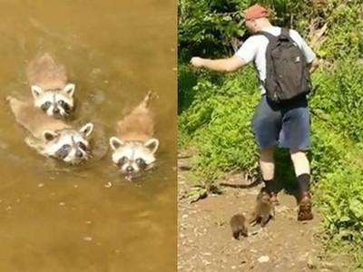 「不要走嘛~」美國大叔去釣魚,被三隻萌浣熊抱腿纏身拉耳朵