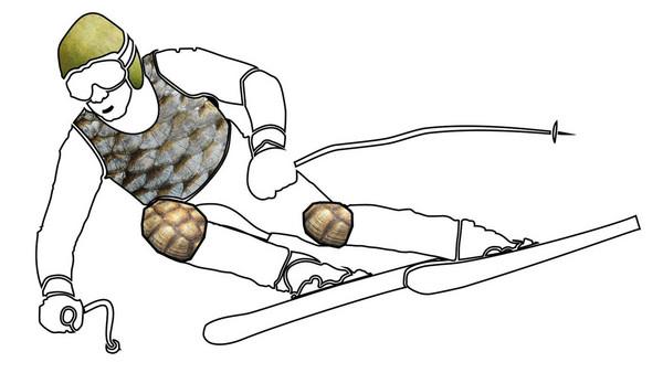 「柚子皮」變真的安全帽?BMW還要研究魚鱗防摔衣!(圖/翻攝自BMW)