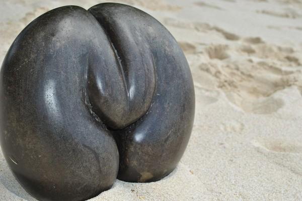 最魔性果實!傳說撞見「交配中的海椰子」。(圖/取自amazing planet)
