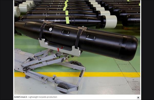 ▲最新A244/S魚雷。(圖/翻攝自leonardo company)