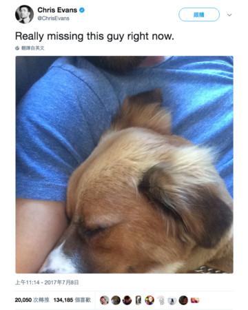 ▲美國隊長上傳與愛犬合照 網友誤以為它離開了。(圖/翻攝自ChrisEvans推特)