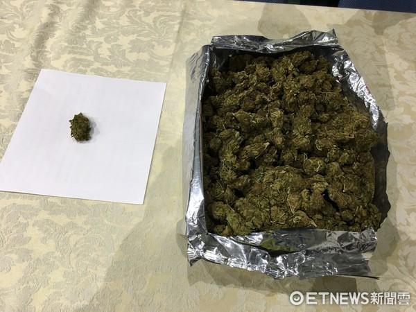 ▲第2級毒品大麻花,具有成癮性及興奮作用,坊間號稱是「貴族毒品」。(圖/記者林悅攝)