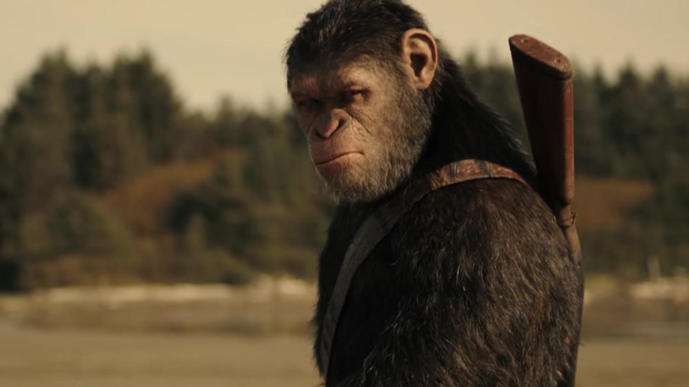 《猩球崛起:終極決戰》。(圖/《猩球崛起:終極決戰》劇照)