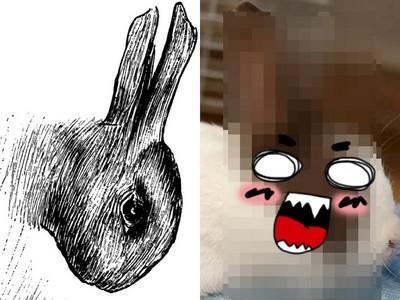 兔頭上真的有張鴨臉!知名測驗「鴨兔錯視圖」本尊曝光