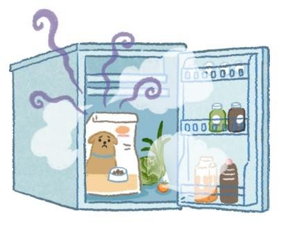 飼料可以放冰箱嗎? 當心濕氣重,毛小孩SAY NO!(圖/毛起來 MaoUp)
