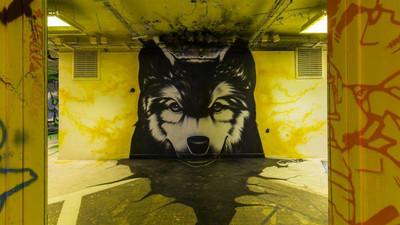 史上最狂!百位藝術家入駐塗鴉,老舊宿舍變景點