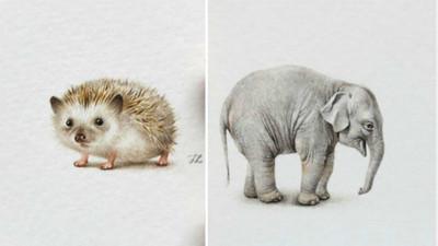 療癒內心小世界! 只有3厘米空間  大象也能縮小