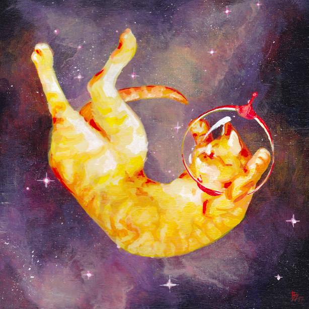 ▲漂浮貓咪(圖/翻攝自Bronwyn官網、IG)