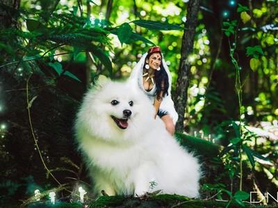 如果《魔法公主》走入現實…找麻糬小白狗演狼神不會太萌嗎?
