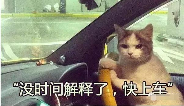 鄉民百科/到底「老司機」是誰?為何大家都要上他車