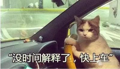 AV老司機到底都甚麼人?為何他們整天開車不求回報?