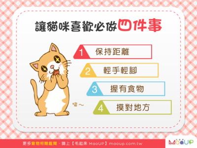 想讓貓咪更愛你? 好奴才必備「4技能」...第3種最有用
