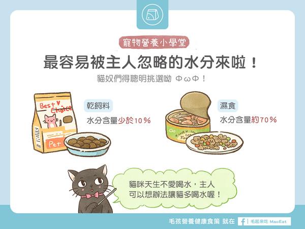 貓奴最容易忽略?乾飼料、濕食水份比一比!(圖/毛起來 MaoUp)