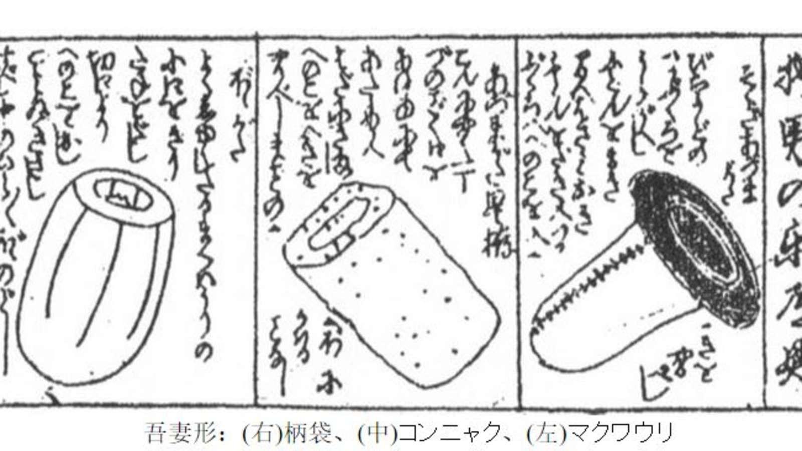 大檸檬用圖(圖/翻攝自kan-nai.net)