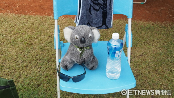▲U12世界盃少棒,澳洲吉祥物,無尾熊Kenny。(圖/記者顏如玉攝)