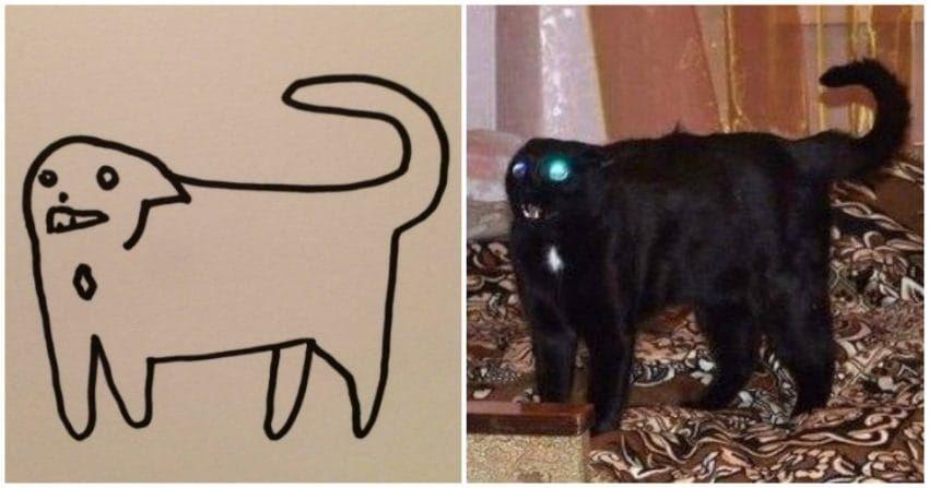 ▲▼巴西插畫家的貓咪作品被刻意說是「中國10歲小學生」的作業。(圖/翻攝自推特,poorlycatdraw)