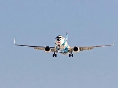 月月上天啦!俄羅斯航空給哈士奇一雙翅膀帶你飛~(憋笑)