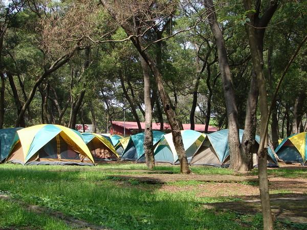 暑假1日遊激推!埔心牧場8月免門票 露營抽SNOW PEAK帳篷。(圖/埔心牧場提供)