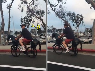 乍看沒什麼 怪男路上騎「鐵馬」,下一秒發現..真的是馬!