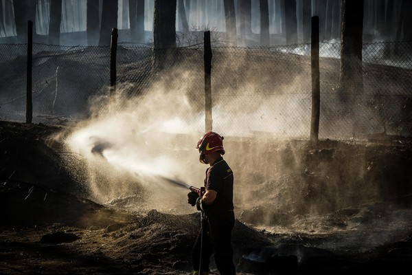 ▲▼ 為賺出勤獎金 消防員放火燒森林。(圖/達志影像/美聯社)