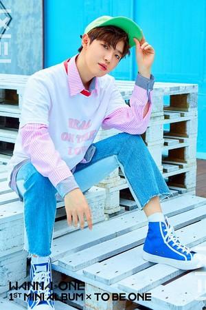 ▲Wanna One金在煥簽約新東家CJ E&M。(圖/翻攝自Wanna One臉書)