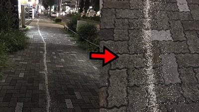街上發現一整條「白米路」 日鄉民笑傻:快跟著去她家